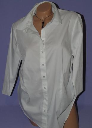 Базовая    рубашка 18 размера papaya