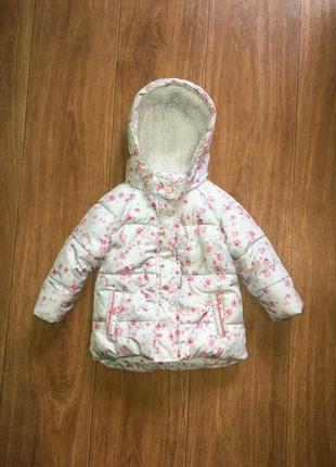 Теплая деми курточка в цветочный принт от primark, указано 6-9 мес
