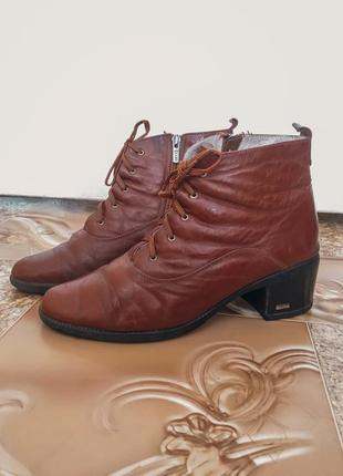 Демисезонные ботинки lexi