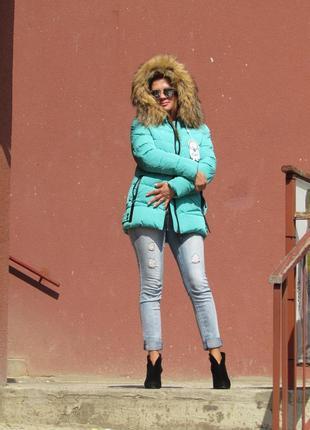 Зимняя куртка на биопуху с натуральным мехом енота, бирюзовая