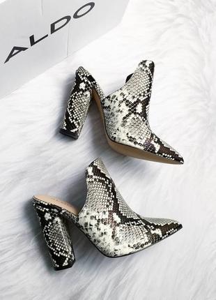 Aldo оригинал туфли сабо змеиный принт на широком каблуке