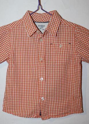 Летняя рубашка oshkosh