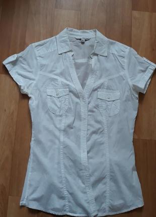 Блуза офисная/ школьная
