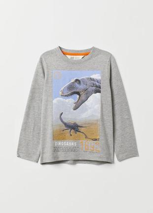 """Реглан h&m с принтом """"динозавры"""" р.4-6, 8-10 лет!"""