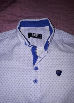 Рубашка с коротким рукавом, шведка рос 116 см