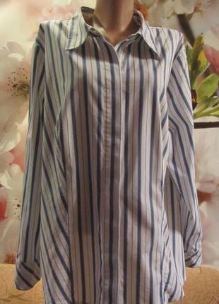 Хлопковая рубашка bryant