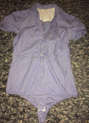 Симпатичный боди - рубашка с коротким рукавом в мелкую полоску