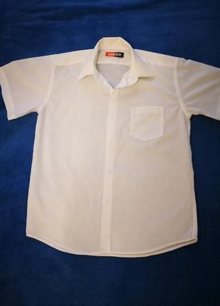 Рубашка белая renew с коротким рукавом