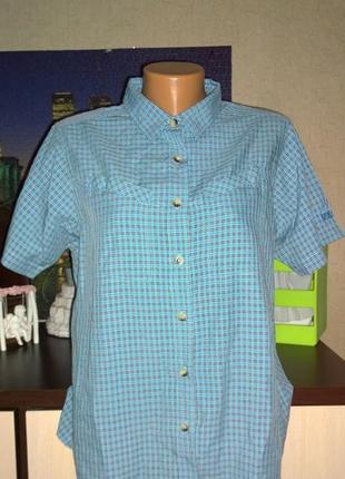 Блузка кофточка рубашка в клетку