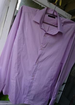 Рубашка сиреневая турция 🇹🇷