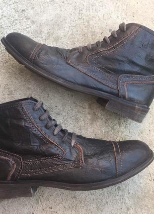 Ботинки осенние ask the missus
