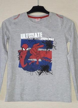 Реглан для мальчика marvel spider man р. 134-140