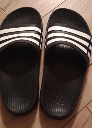 Шлепанцы для бассейна adidas
