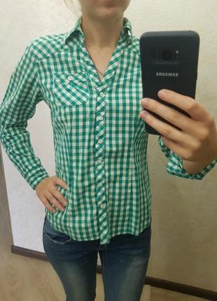 Рубашка зеленая в клеточку