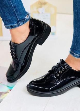 Лаковые туфли на шнурках низкий каблук синие, бордовые