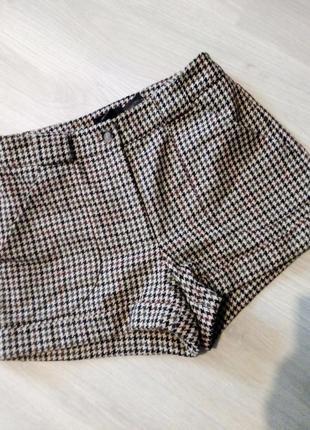 Брендовые шорты гусиная лапка шерсть