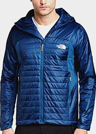 Куртка the north face dnp jacket оригинал