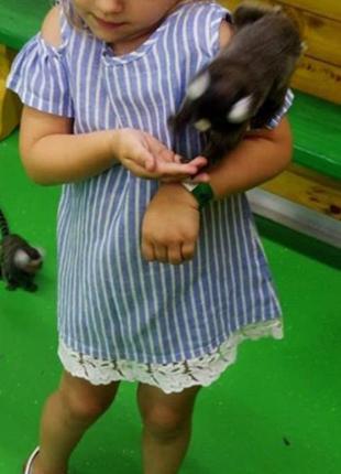 Платье сарафан с открытыми плечами, рюши кружево / обмен