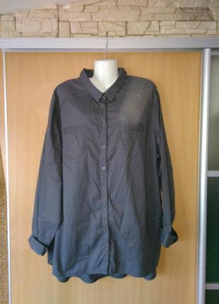 Натуральная рубашка cecil,54-56р