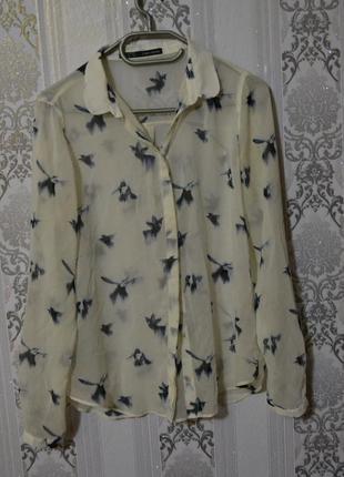 Красивая шифоновая блуза в колибри zara размер л