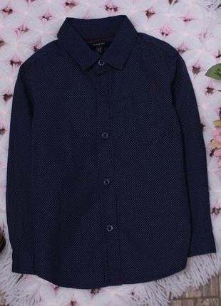 Нарядная рубашка в мелкий горох