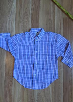 Рубашка в клетку palomino