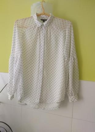 Шикарная белая блуза в горох от massimo dutti