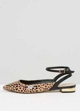 Новые трендовые туфли asos