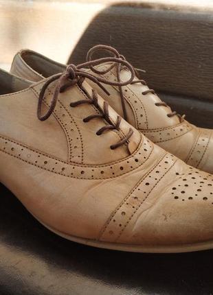 Туфлі брогі badura