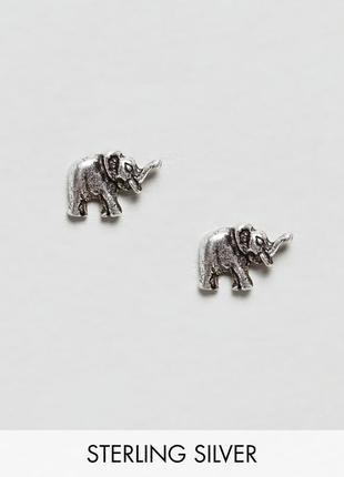 Серебряные серьги-гвоздики kingsley ryan asos