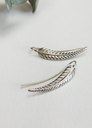 Серебрянные серьги в форме листика kingsley ryan сережки бижутерия asos