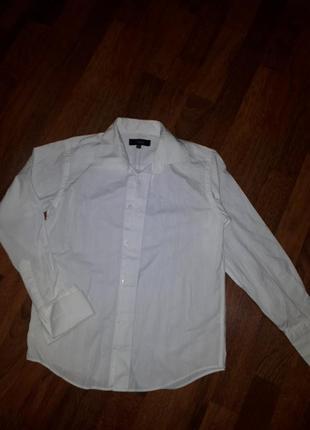 Рубашка thomas nash 8-9