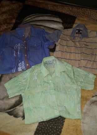 Комплект рубашек для мальчика
