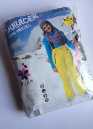 Зимние, лыжные штаны на тинсулейте bloem германия, комбинезон на подтяжках