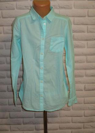 Рубашка/блузка h&m (нм)  как новая
