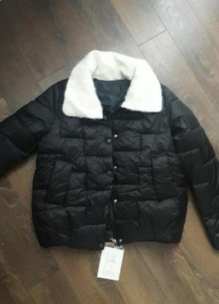 Куртка балон коротка