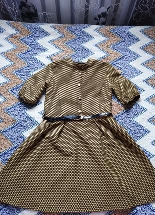 Плаття з пояском