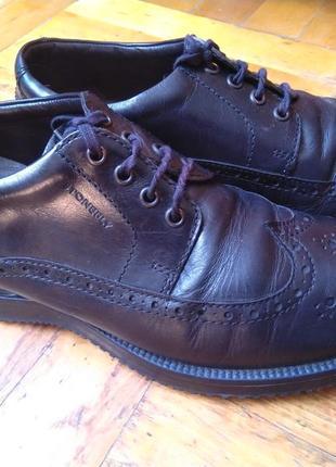 Туфли stonefl, кожаные, made in italy, original, обувь, взуття, италия