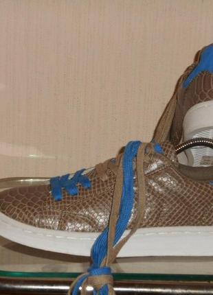Кеды, туфли рrimadonna collection унисекс