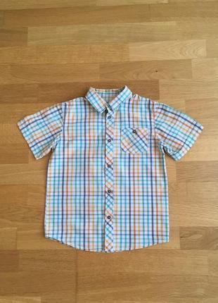 Рубашка zy 131-137 см бангладеш