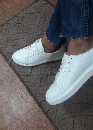 Хит! белые кожаные кеды
