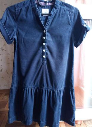 Стильное платье из микровельвета