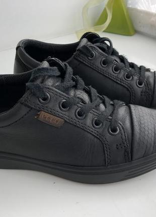 Туфлі ecco 33