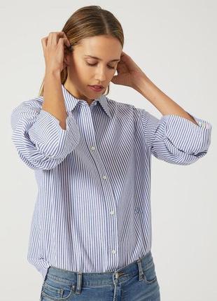 Полосатая голубая женская рубашка emporio armani