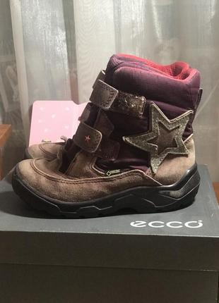 Сапоги ботинки) фирма ecco