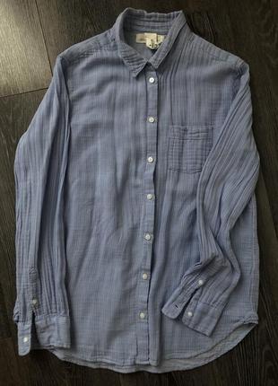 Хлопковая нежно голубая рубашка в мелку белую полоску