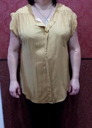 Шикарная базовая блуза
