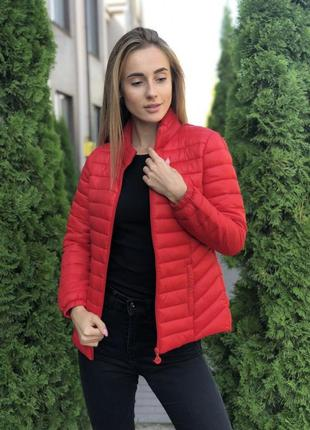 Куртка деми женская приталенная
