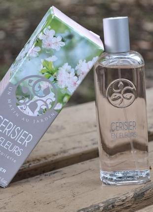 Ив роше / yves rocher cerisier en fleurs вишня в цвету