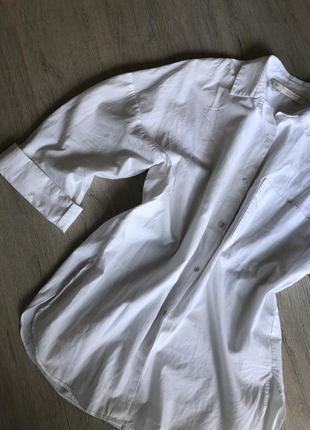 Ідеальна сорочка zara